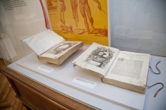 """Ars Librorum"" - Vitrina sala 2"