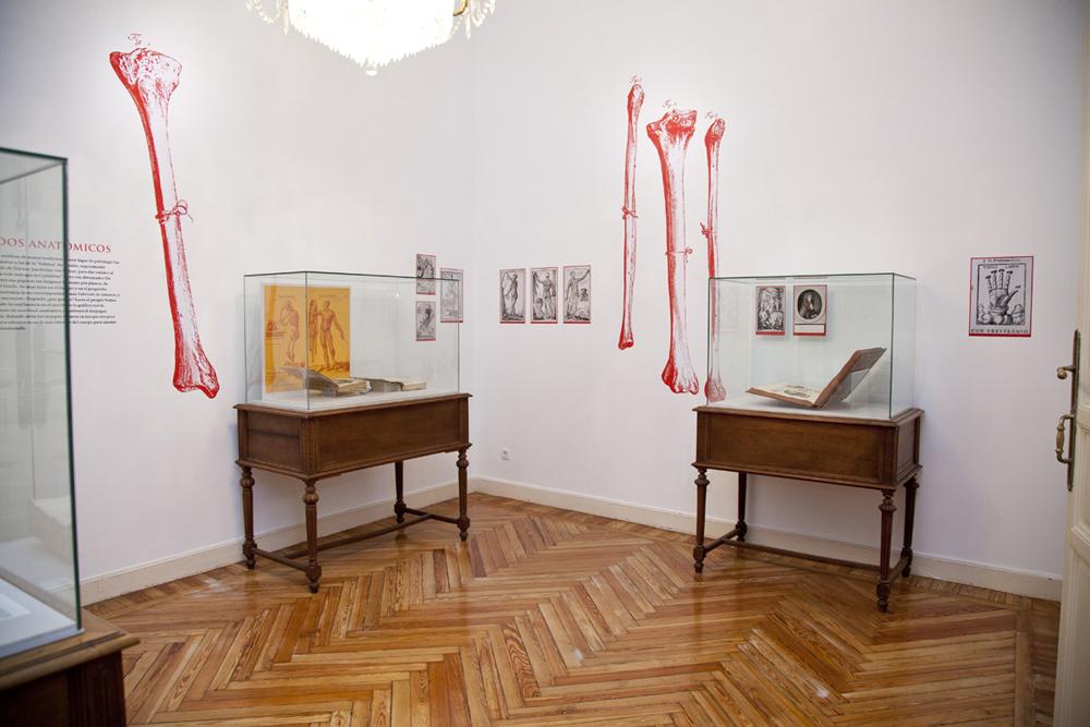 Exposición Ars Librorum - Sala 2